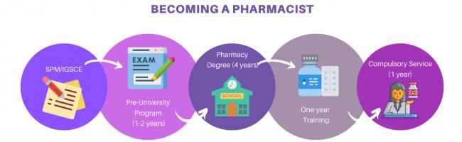 pharmacy pathway (2)